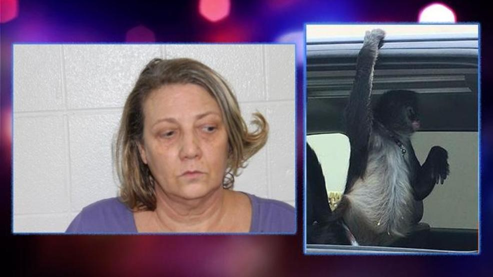 Owner of attacking monkey arrested on fugitive warrant in NC
