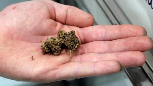North Carolina proposes smokable hemp ban as demand grows   WLOS
